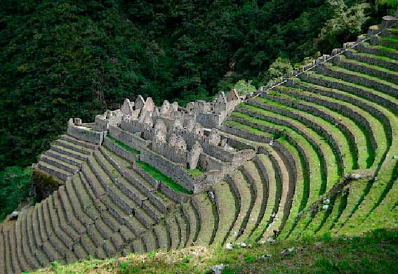 Excursion - Camino Inca - Peru
